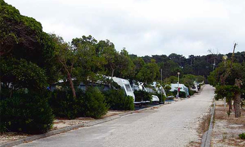 Camping Campigir - São Pedro de Moel