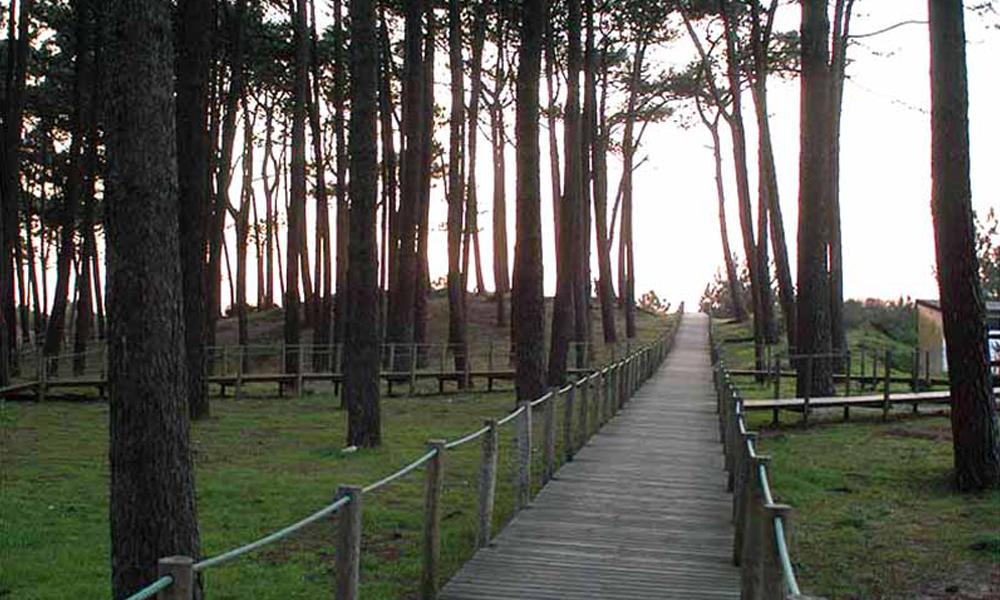 Camping Orbitur-Caminha