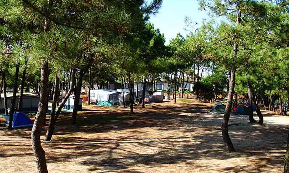Camping Orbitur-Rio Alto