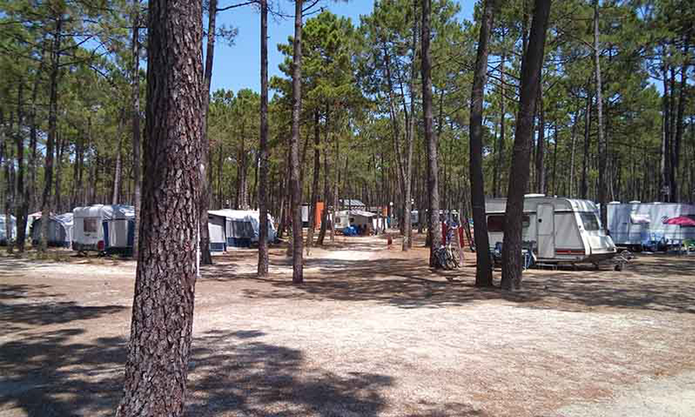 Camping Orbitur-Vagueira